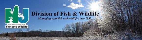 F&W winter banner updated