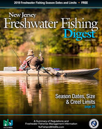 Digest cover