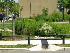 Green infrastructure (2)