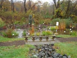 Rutgers Cooperative Extension Rain Garden, Freehold