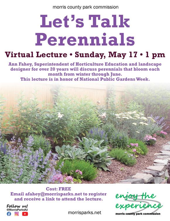 lets talk perennials