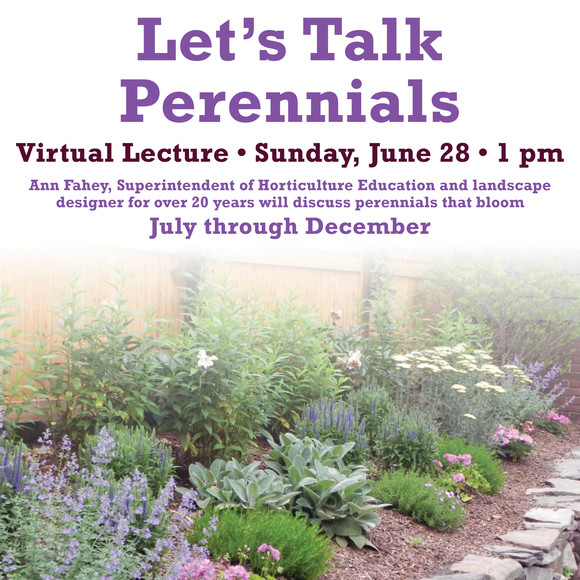 perennials virtual lecture