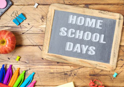 Virtual Home School Days