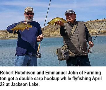 double carp