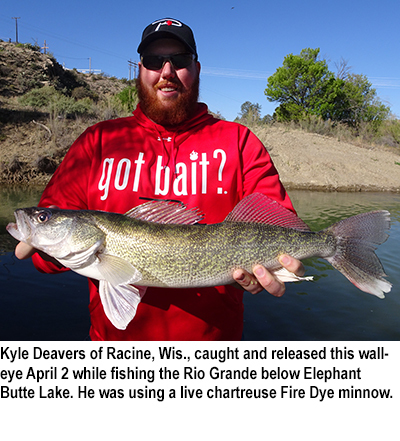 new mexico fishing and stocking report for april 11