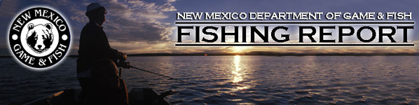 fishing report bw logo