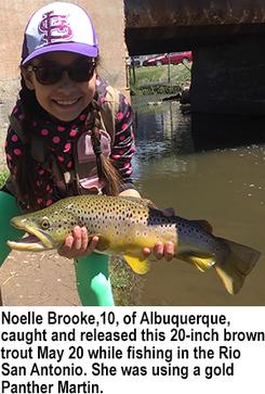 Noelle Brooke