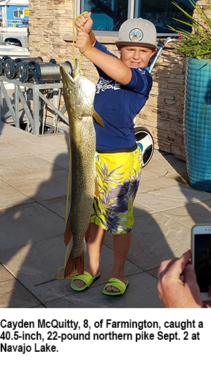 New mexico fishing and stocking reports for sept 19 for Conchas lake fishing report