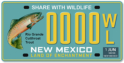 Cutthroat trout featured on new license plate krtn for Mexico fishing license
