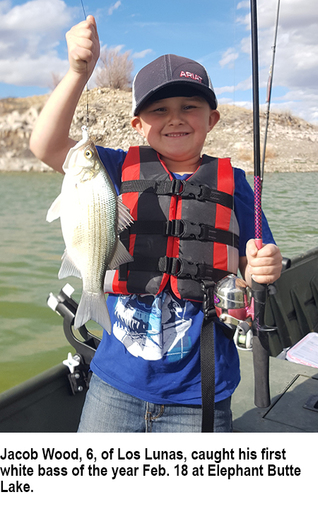 New Mexico fishing and stocking report for Feb  20