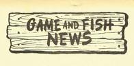 GFNews2