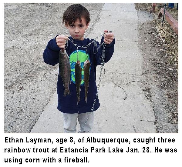 EthanLayman