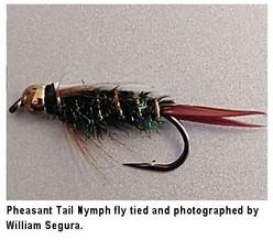 pheasant tail nmph