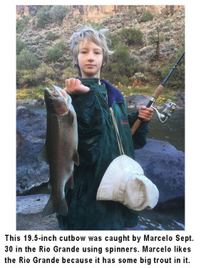 Marcello fishing image