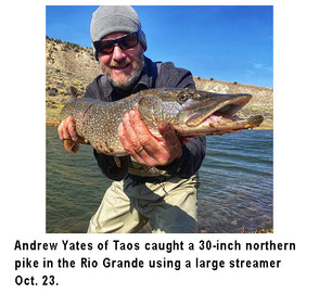 Yates fishing image