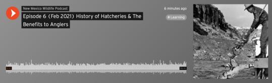 Hatcheries Podcast