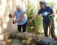 Composting image3