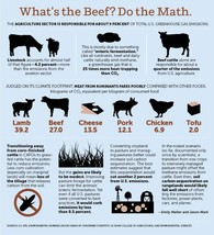 Methane and Meat