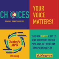 MPO Survey