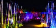 GLOW SF Botanical Garden