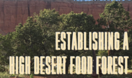 How to Establish a High Desert Food Forest