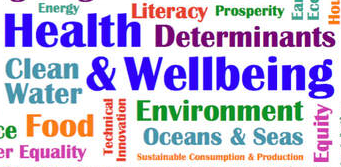 Social Determinants and Sustainability