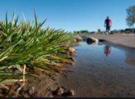 WaterSMART Conservation
