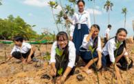 UN Ten Year Ecological Restoration