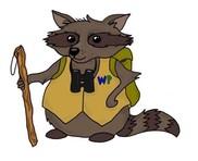Cartoon Racoon Explorer