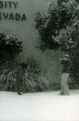 Winter Snow 3