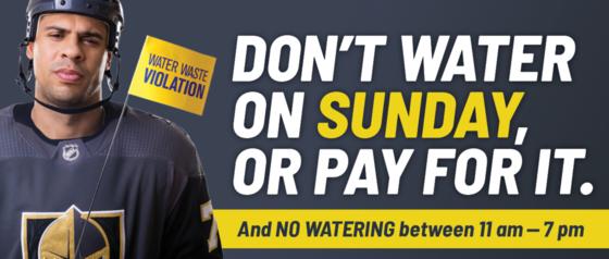 SNWA Watering Schedule
