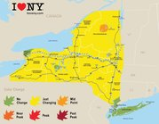 Fall Foliage Report 2018