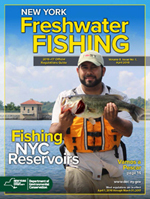 Cover of 2016/17 NY Freshwater Fishing Regulations Guide
