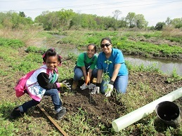 Mom and daughters plant trees along a stream