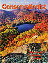 October 2016 Conservationist cover