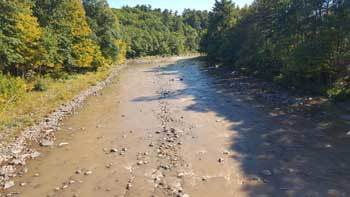 Photo of low water levels and turbid conditions in the Esopus