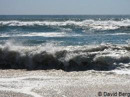 Long Island beach