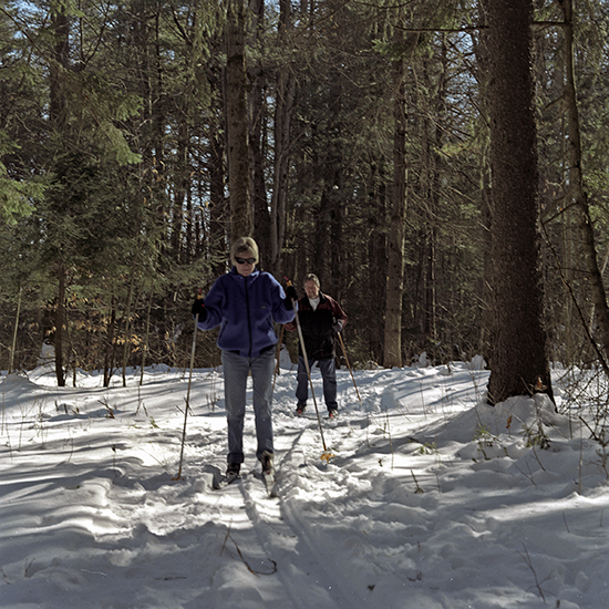 Some people cross-country skiing