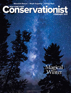 Cover of the February 2017 issue of Conservationist Magazine