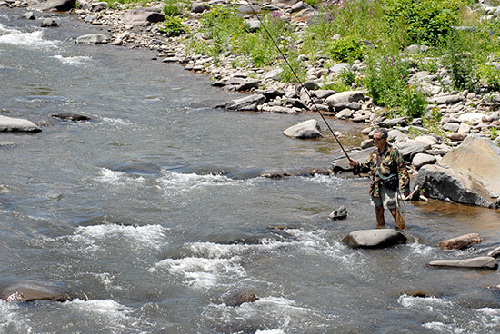 Spring means trout fishing in new york state for Nys fishing seasons