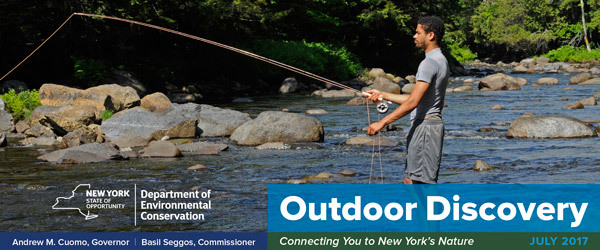 Banner Image - A man in shorts fly fishing in a rocky stream