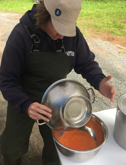 DEC staff handling brown trout eggs