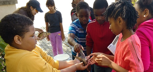 Students touch fish for the first time at Jennings Park in Albany