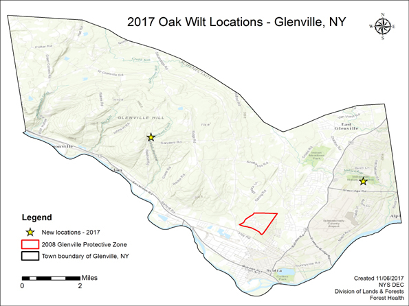 Map of Glenville oak wilt locations