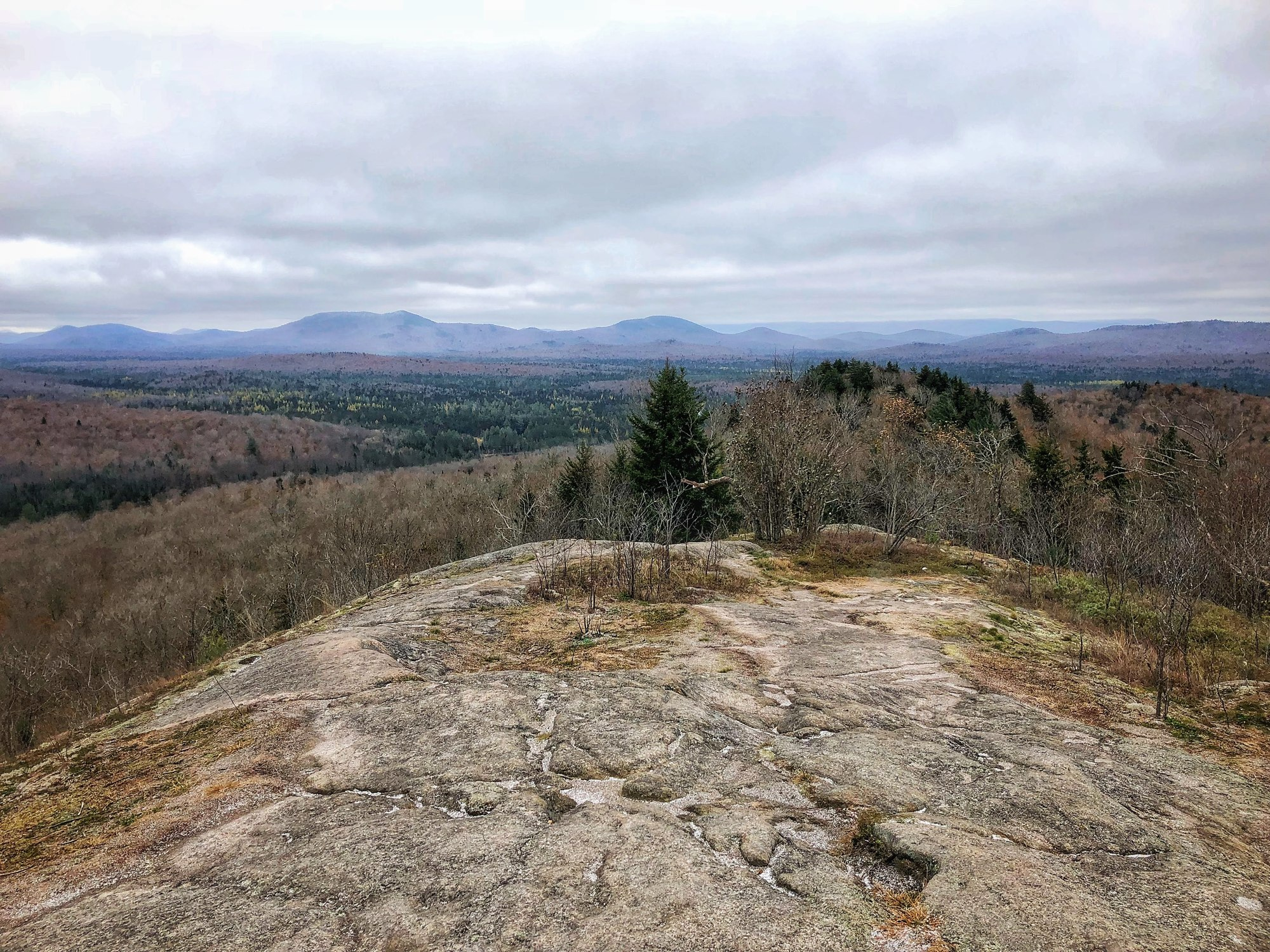 Coney Mountain