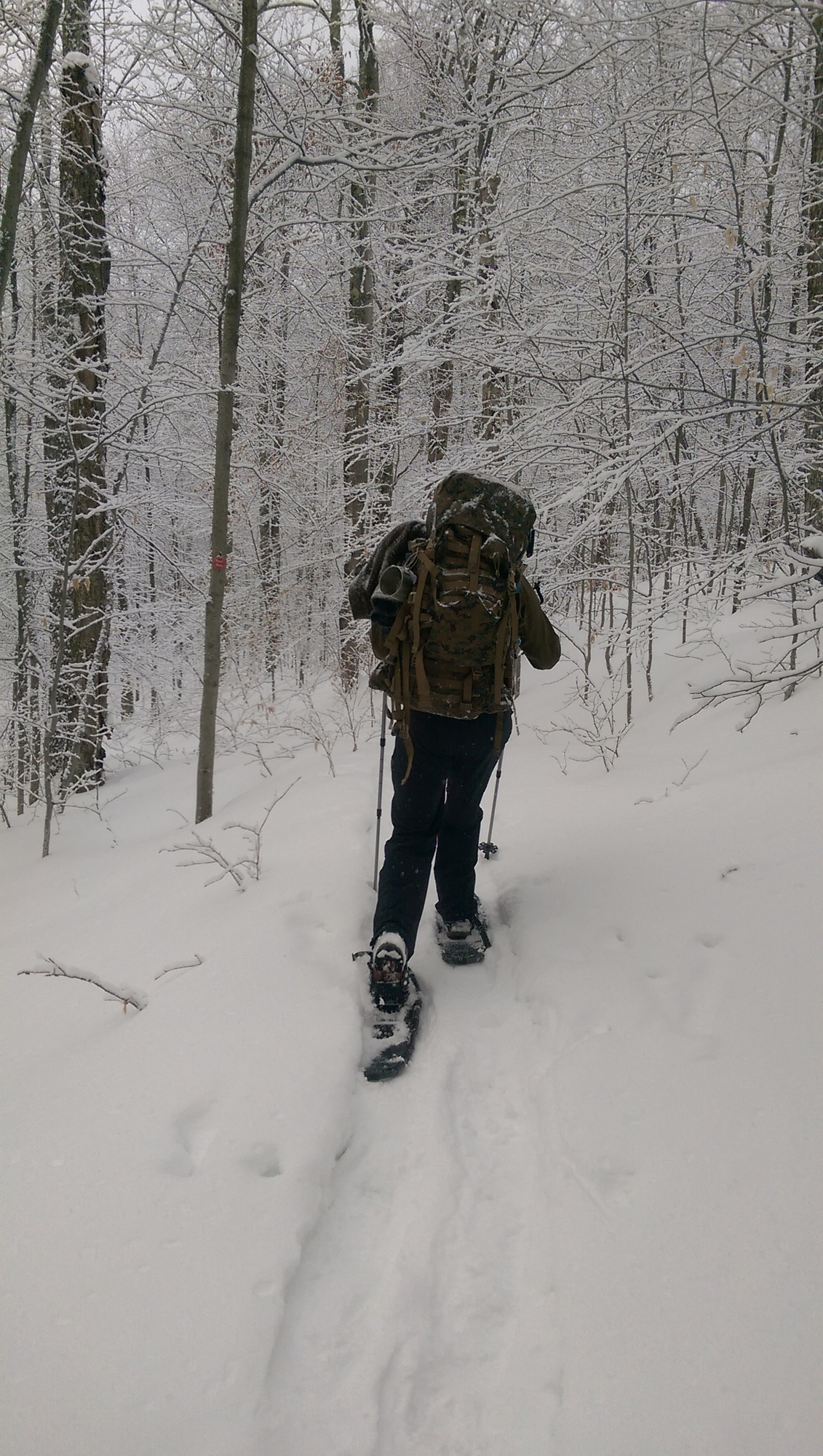 Winter Trail Conditions