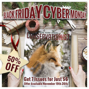 Conservationist Cyber Monday Sale