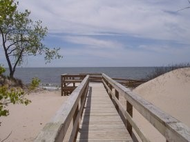Boardwalk over dunes at Lakeview WMA