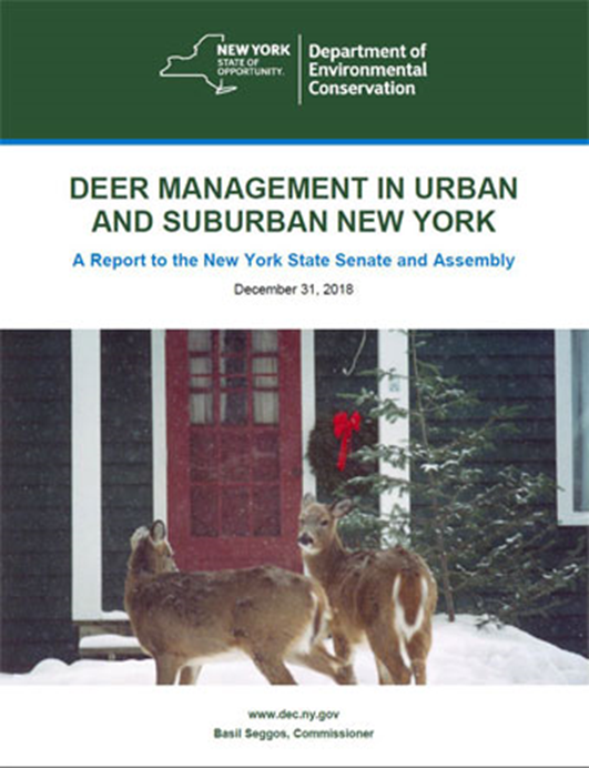 The cover of the DEC's report on Urban and Suburban Deer Management in New York.