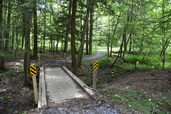 An accessible trail on Hand Hollow State Forest, leading to an accessible bridge over a creek